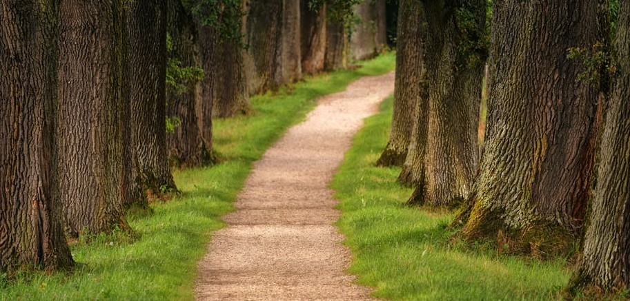 Sometimes our path is obvious; but often, it is unclear.