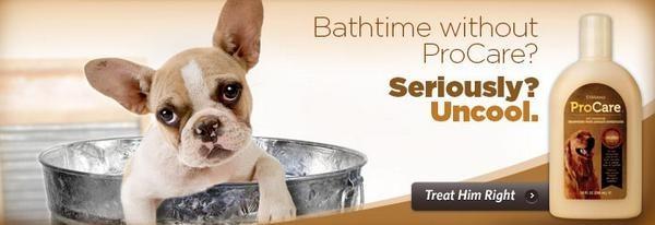 ProCare Also Has Dog Shampoo