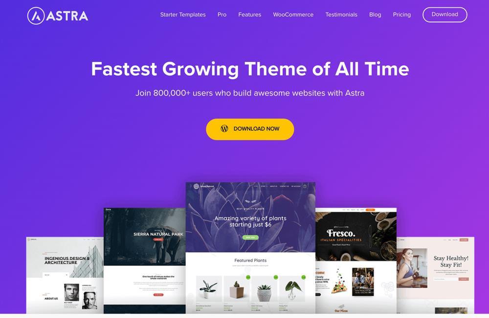 AstraWooCommerce Theme
