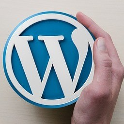 WordPress is the only website building platform I use.