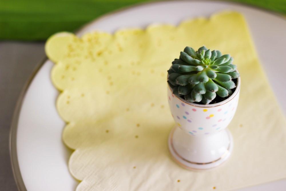 succulent Easter egg planter