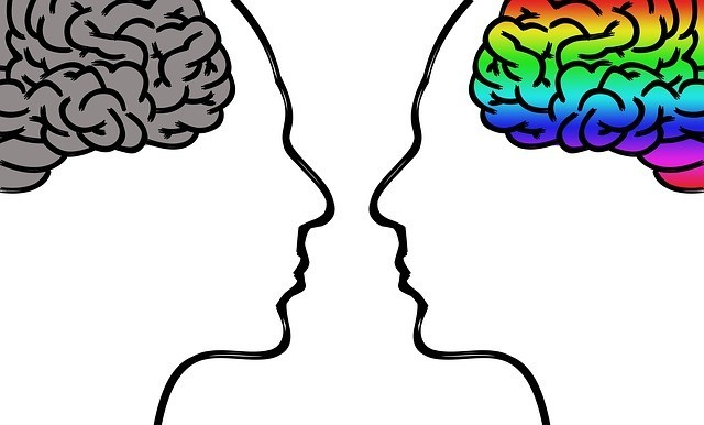 Cognitive Brain Exercises