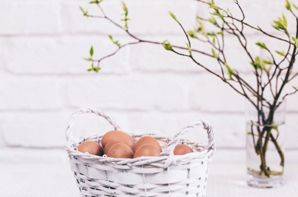 putting all of your eggs into one basket