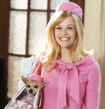Legally Blonde Pet Carrier