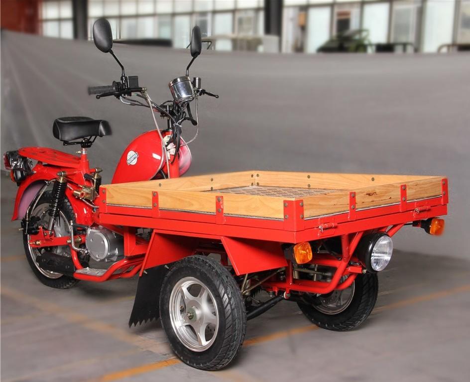 Reverse Cargo Trike