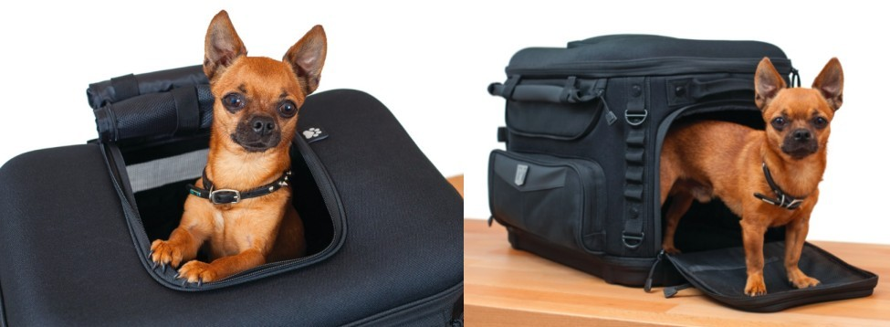 Motorcycle Dog Pet Carrier