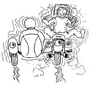 Sidecar Wobble