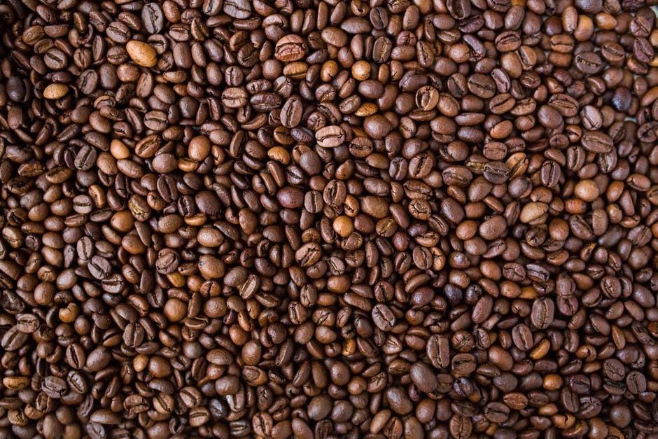 does alpecin caffeine shampoo work