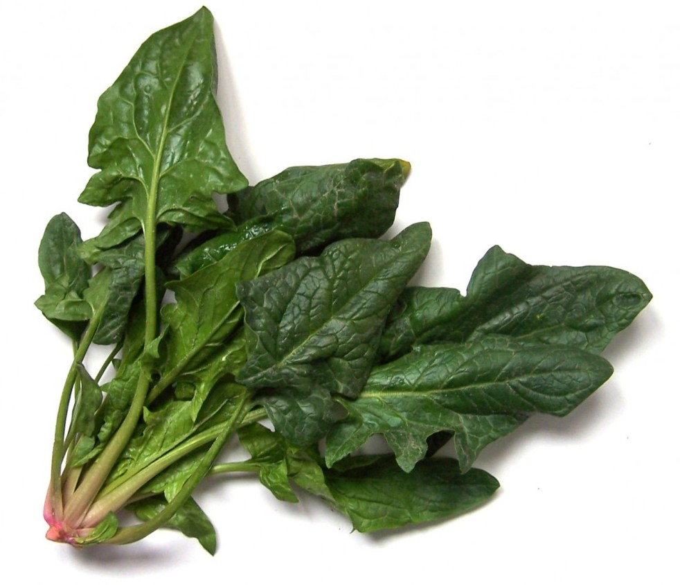 Is Spinach Healthy For You