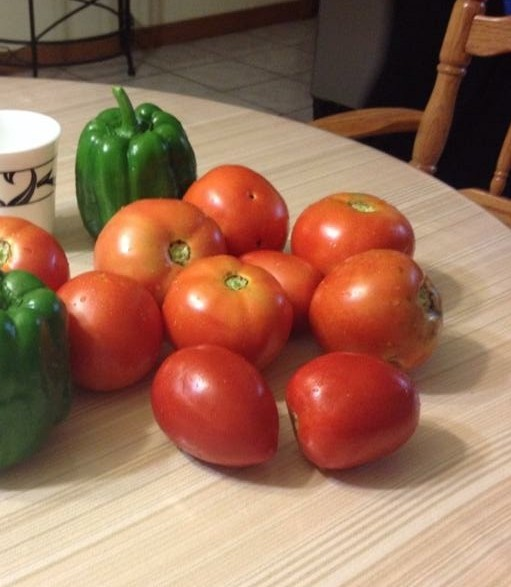 Tomatoes are healthy. These are from my organic garden.