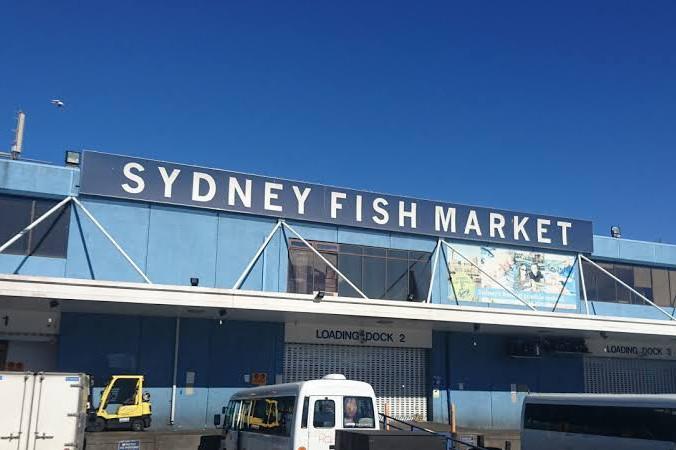 days trips in Sydney