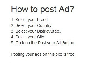 Post Your Ad