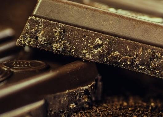 cocoa for fat loss
