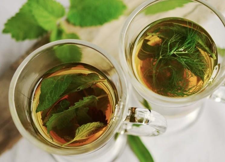 green tea for slim line