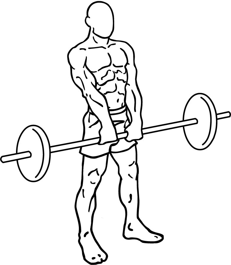 sketch of a man holding a barbell(image courtesy of wikipedia)