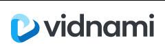 Vidnami Logo