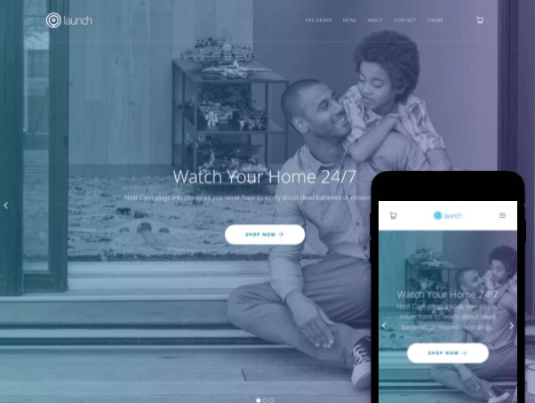 Launch Services Shopify Theme