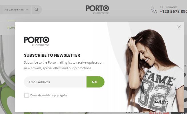 Shopify Porto Email Popup