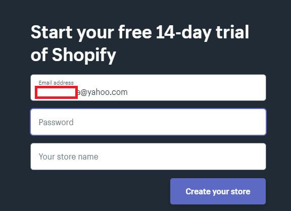 Fast Dropshipping Shopify Store Setup