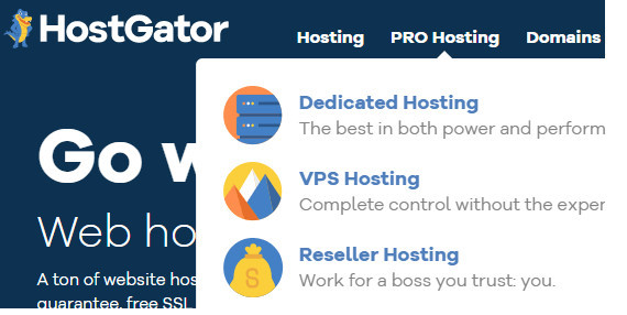 Products to Promote As HostGator Affiliate