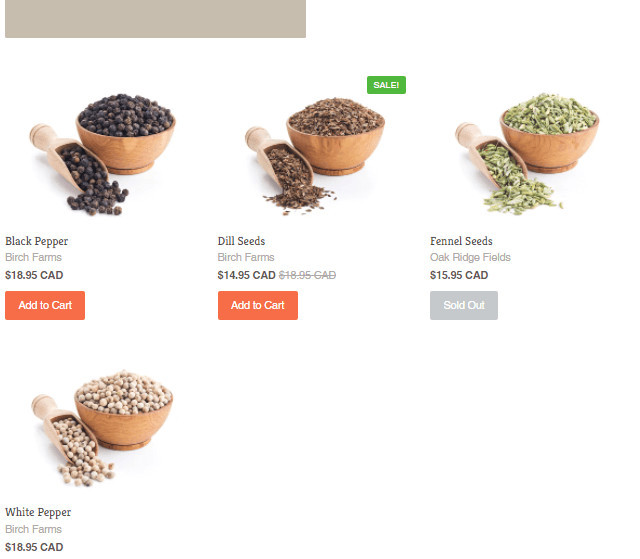 Providence Shopify Food Delivery Theme