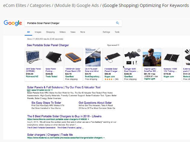 Ecom Elites Google Shopping Ads Training
