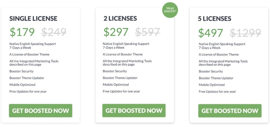 Booster Theme Pricing & Discount