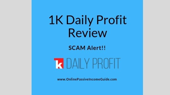 1K Daily Profit Review