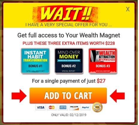 Your Wealth Magnet Discount