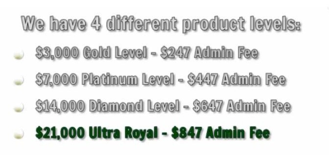 big income system 4 levels