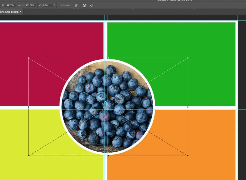 blueberries in colorful square