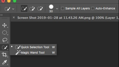the magic wand tool
