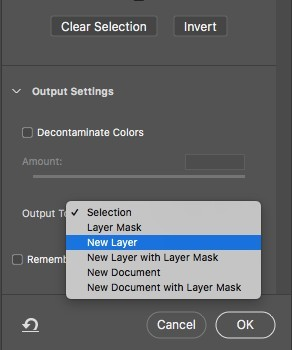 output to new layer in photoshop
