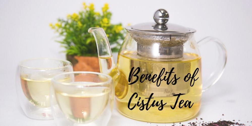 Cistus Tea - Graphic