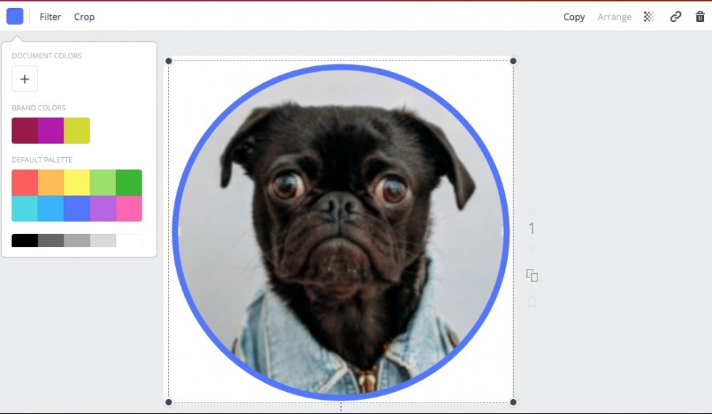 bull dog in blue frame in Canva