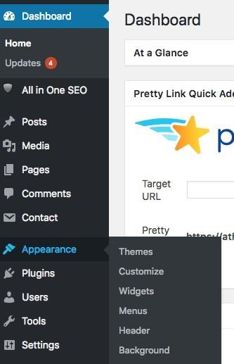 What Is A Pinterest Widget - WordPress Dashboard