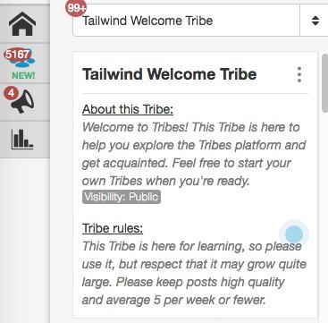 Tailwind Tribes Dashboard