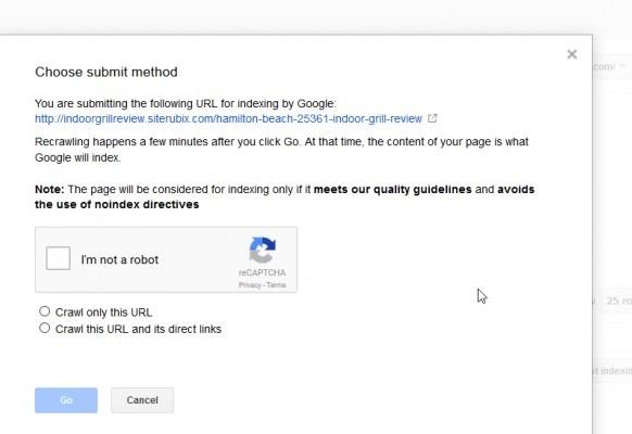 google fetch add url
