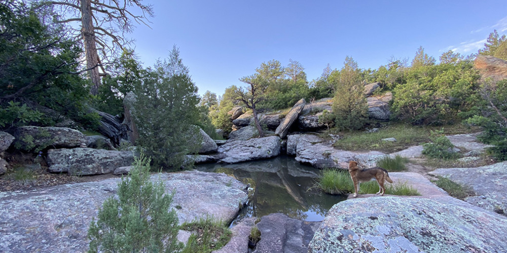 East Canyon Preservation Trail