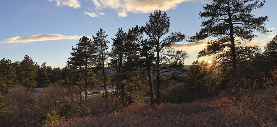 Dawson Butte Trail Sunset