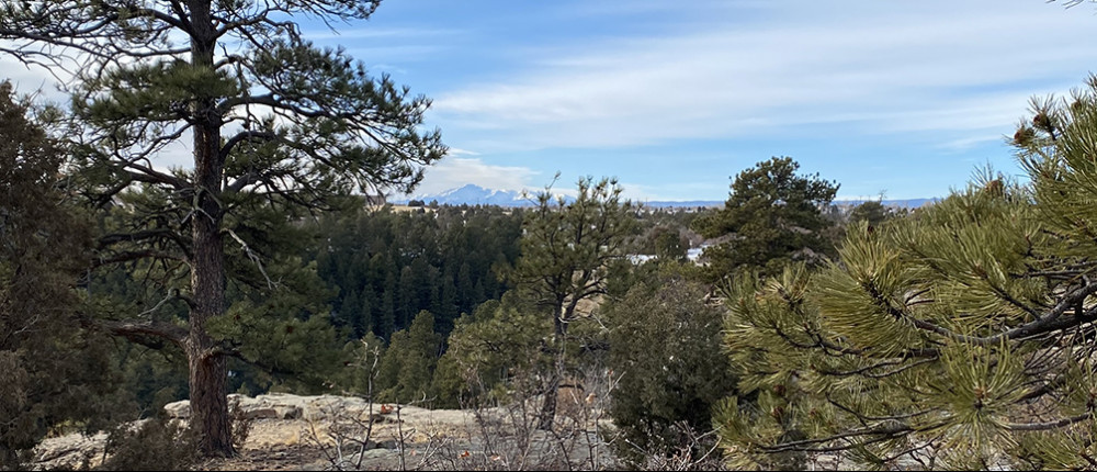 Pikes Peak from Mitchell Creek Canyon Trail