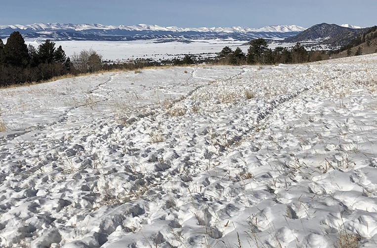 Elk Herd Trail | Badger Mountain Trail