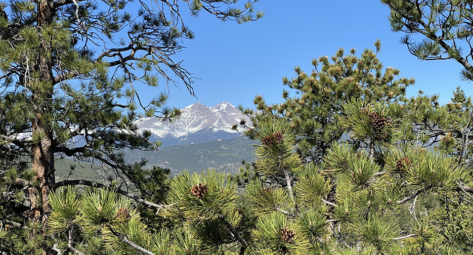 RMNP   Longs Peak