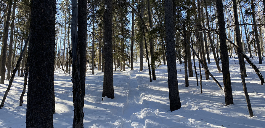 Hiking Up a Mountain in Snowshoes