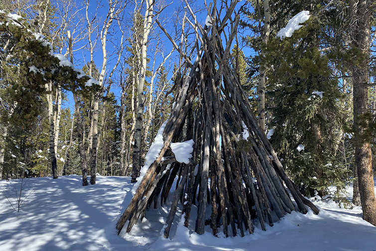 Log Tepee