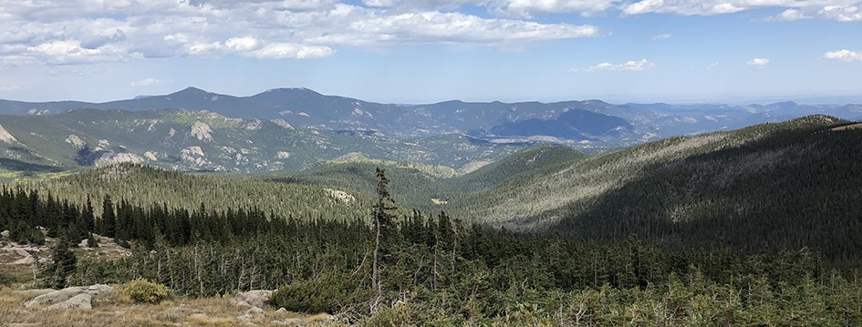 Tanglewood Trail - End Looking Towards Evergreen, CO