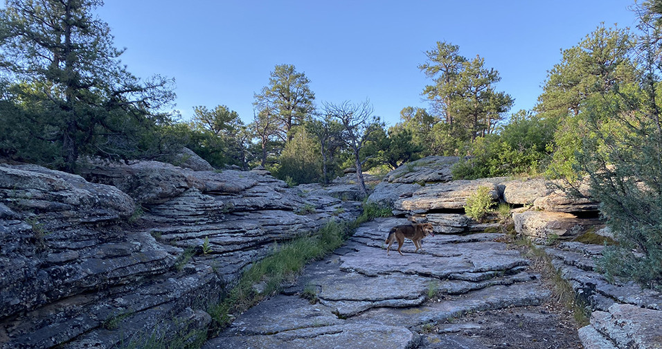 Rock formation on the East Canyon Preservation Trail