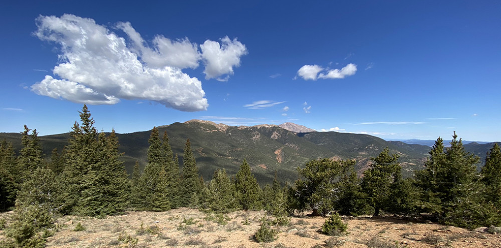 Pikes Peak National Forest