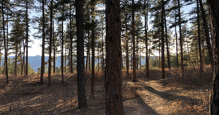 Dawson Butte Ranch Open Space Trail