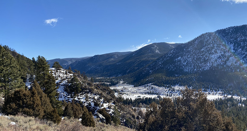 Hiking Trails in Colorado | Roaring Creek Trail